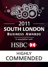 2011 South London Business Awards